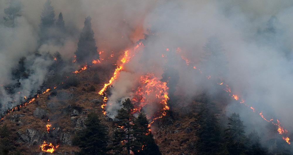 जंगलको आगो बस्तीमा पस्यो, तीन घर जले