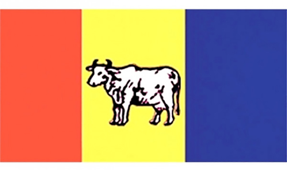 राप्रपाले गर्यो ५ प्रदेशका अध्यक्ष र उपाध्यक्ष मनोनयन