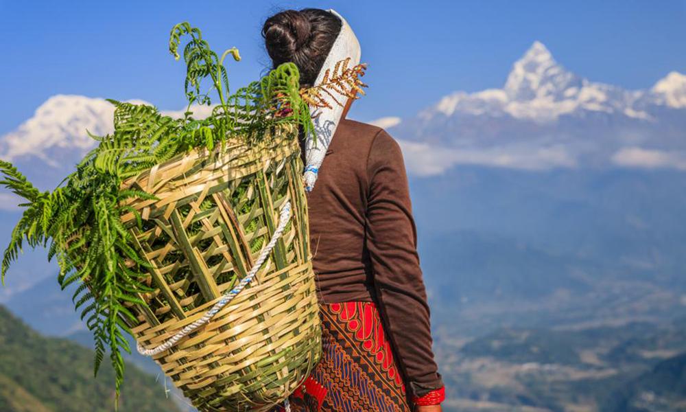 दूरदराजका दिदीबहिनीको पीडा बेचेर महिलावादको व्यापार