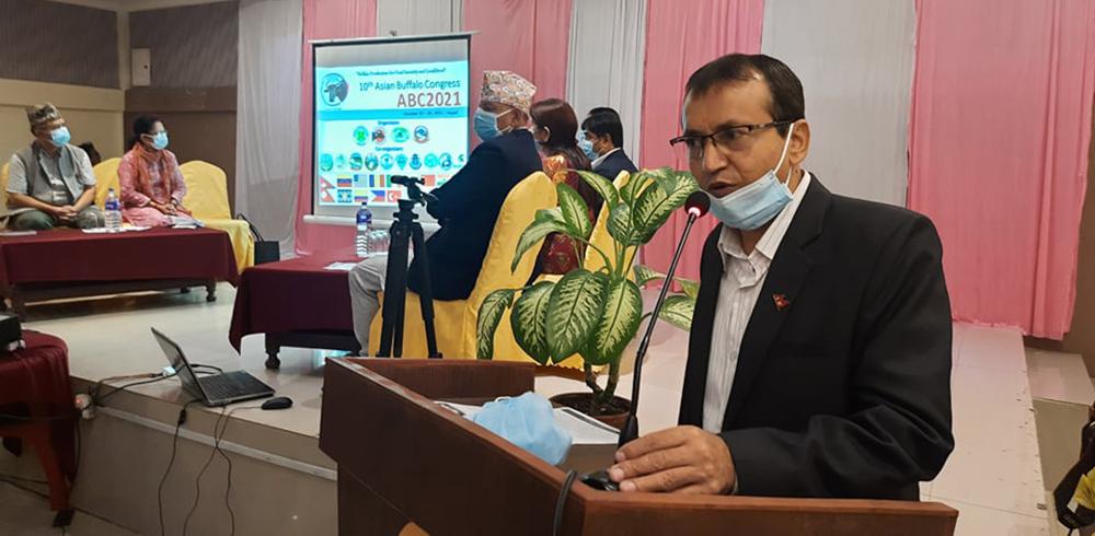 नेपालमा पहिलोपटक एसियन भैंसी सम्मेलन हुने (भिडिओ)