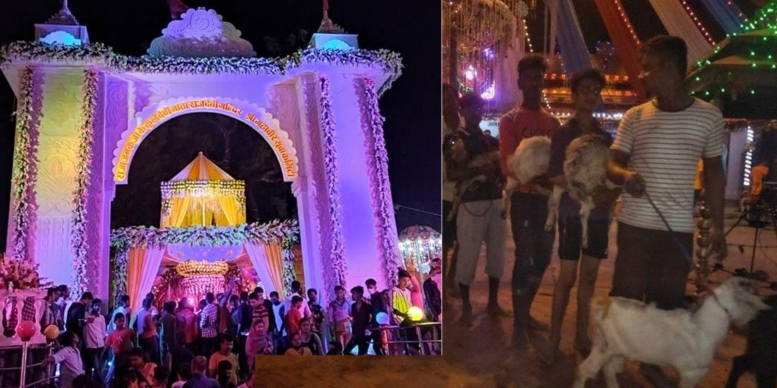 राजदेवी मन्दिरमा एकै रात १४ हजार बोकाको बली